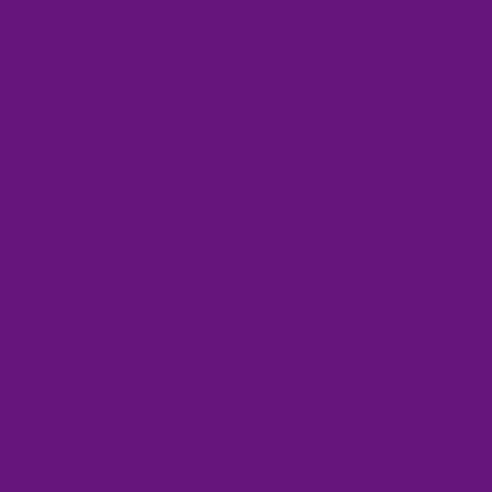 COLOR&CO GOUACHE 1L 601 VIOLET