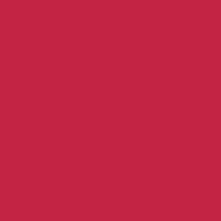 COLOR&CO GOUACHE 1L 327 CARMIN