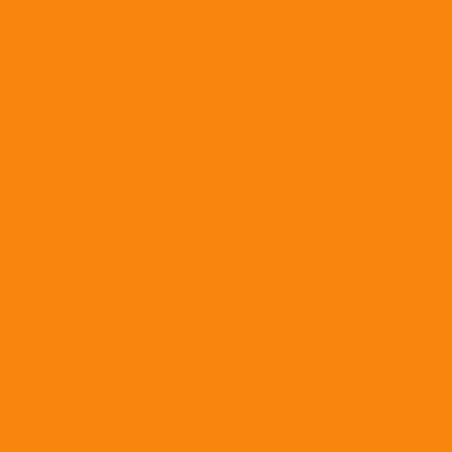 COLOR&CO GOUACHE 1L 201 ORANGE