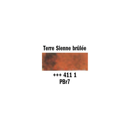 REMBRANDT AQUARELLE 1/2 GODET S1 411 TERRE SIENNE BRULEE