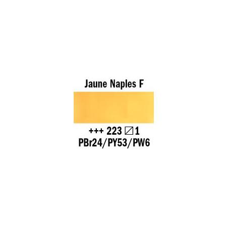 REMBRANDT AQUARELLE 1/2 GODET S1 223 JAUNE NAPLE FONCE