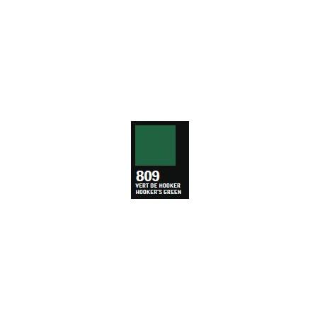RAPHAEL ACRYLIQUE SATINEE 100ML 809 VERT HOOKER