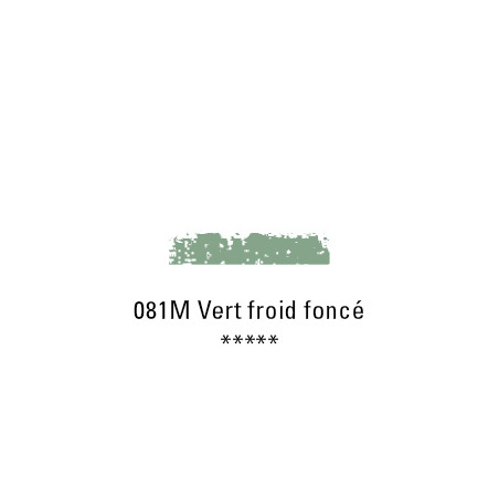SCHMINCKE PASTEL TENDRE 081M VERT FROID FC