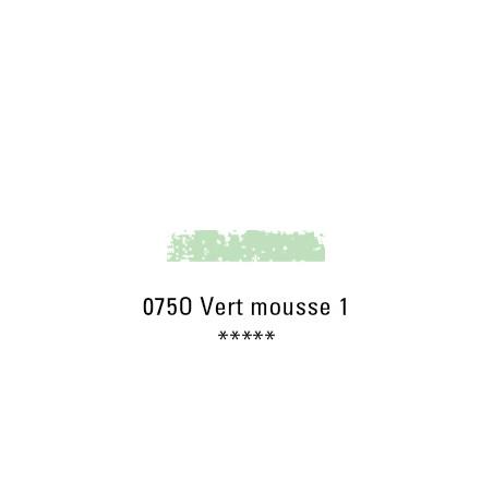 SCHMINCKE PASTEL TENDRE 075O VERT MOUSSE 1