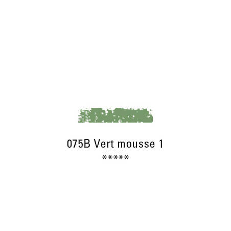 SCHMINCKE PASTEL TENDRE 075B VERT MOUSSE 1