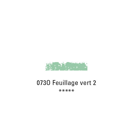 SCHMINCKE PASTEL TENDRE 073O FEUILLAGE VERT 2