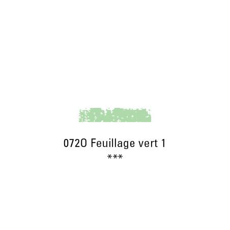 SCHMINCKE PASTEL TENDRE 072O FEUILLAGE VERT 1
