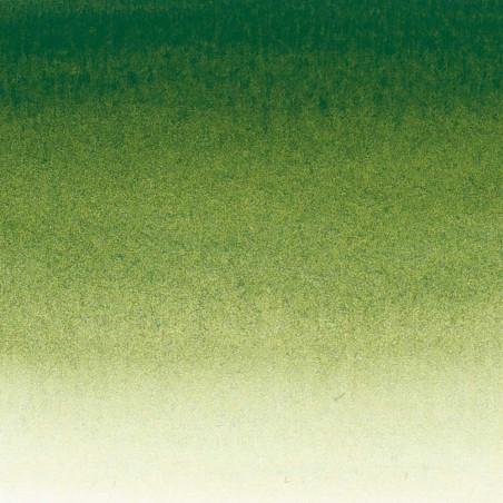 SENNELIER AQUA EXTRA FINE TUBE 21ML S1 819 VERT DE VESSIE