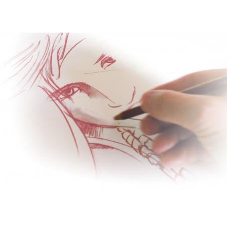 Papier à dessin Ingres