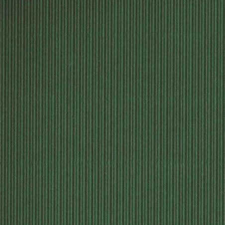 CANSON CARTON ONDULE 300G 50X70CM VERT CLAIR/HC