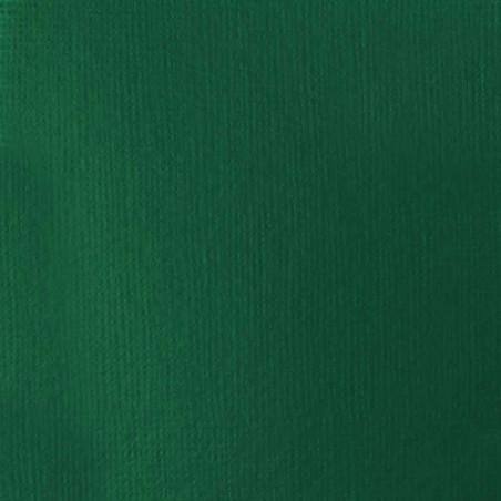 LIQUITEX BASICS ACRYL 118ML 350 VERT FONCE