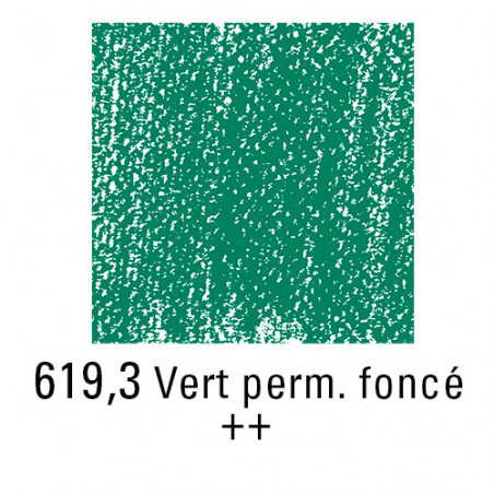 REMBRANDT PASTEL SEC 619,3 VERT PERMANENT FONCE