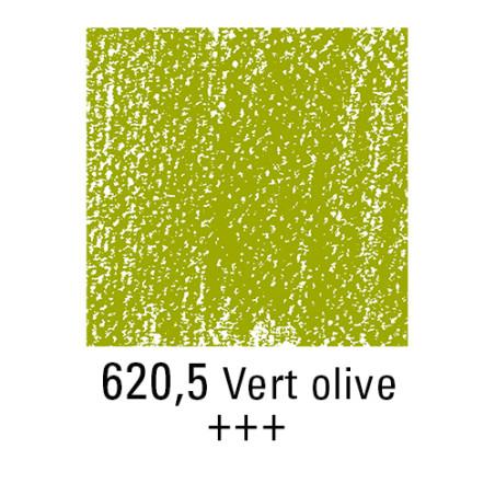 REMBRANDT PASTEL SEC 620,5 VERT OLIVE