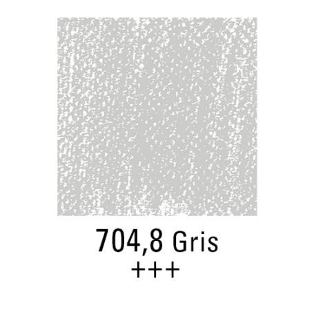 REMBRANDT PASTEL SEC 704,8 GRIS