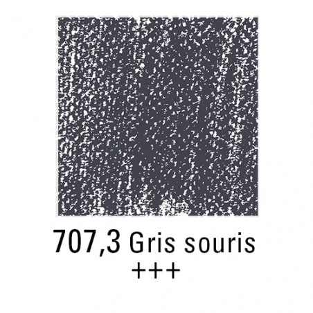 REMBRANDT PASTEL SEC 707,3 GRIS DE SOURIS