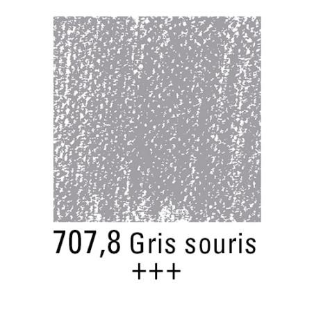 REMBRANDT PASTEL SEC 707,8 GRIS DE SOURIS