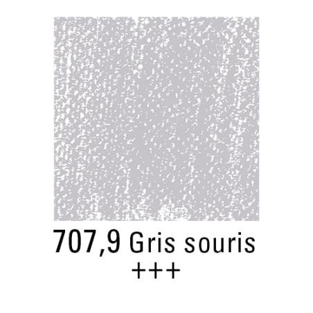 REMBRANDT PASTEL SEC 707,9 GRIS DE SOURIS