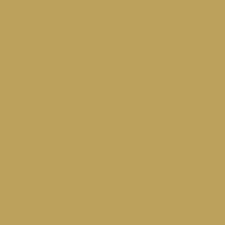 COLOR&CO GOUACHE 1L 700 OR
