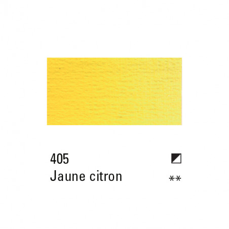 BOESNER HUILE 60ML 405 JAUNE CITRON