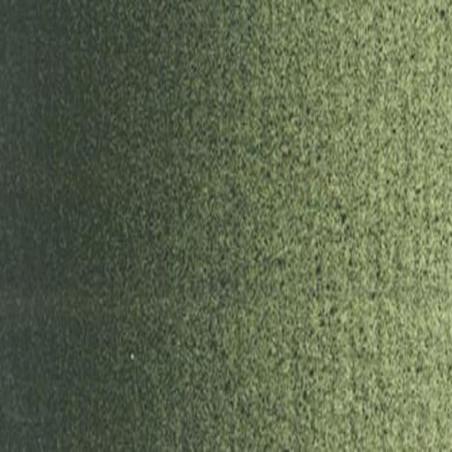 BOESNER HUILE 60ML 719 TERRE VERTE