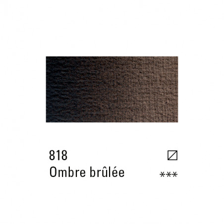 BOESNER HUILE 60ML 818 TERRE OMBRE BRULEE