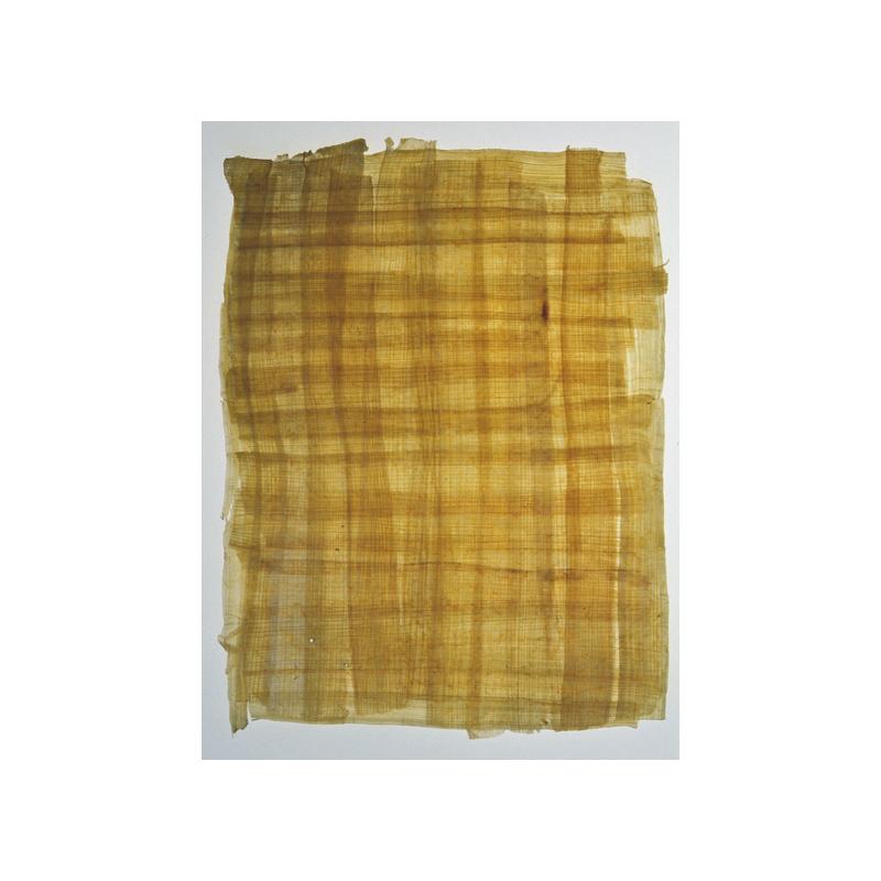 Papyrus véritable