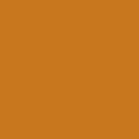 MONTANA GOLD 400ML 1250 TERRA