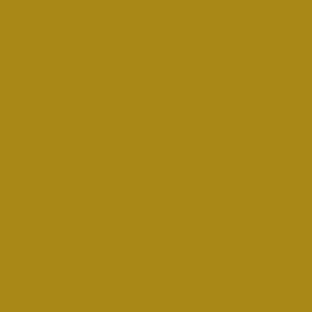 MONTANA GOLD 400ML 1060 MUSTARD