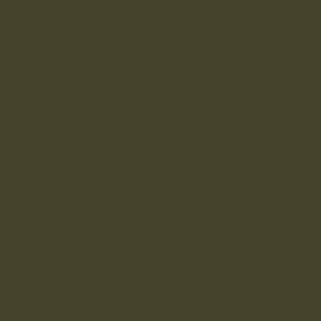 MONTANA GOLD 400ML 1170 NATO