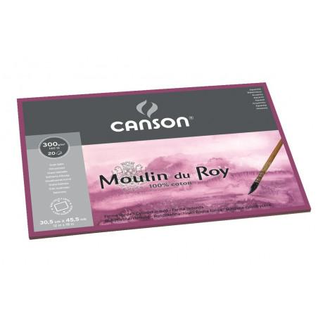 CANSON MOULIN DU ROY BLOC 1 COTE 300G GS 24X32CM 12F