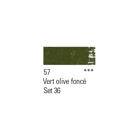 BOESNER PASTEL 57 VERT OLIVE FONCE