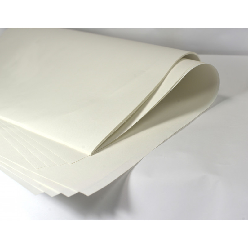Manipack 25 feuilles Ingres 50 x 65 cm