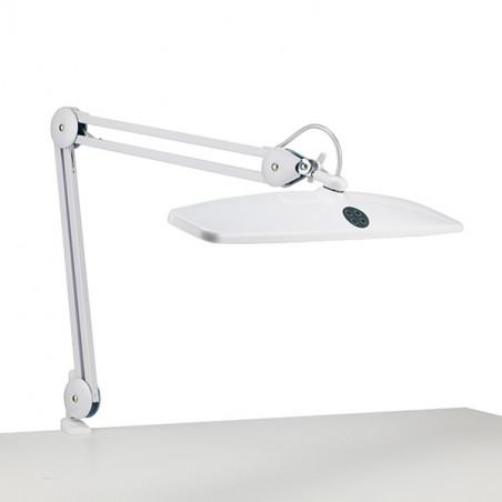 Lampe LED de bureau Task Daylight