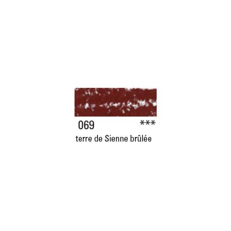 NEOCOLOR 2 069 TERRE SIENNE BRULEE