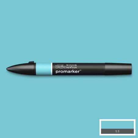 W&N PROMARKER UF DE CANARD (C528)