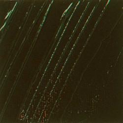 PEBEO HUILE F XL 200ML OMBRE NAT