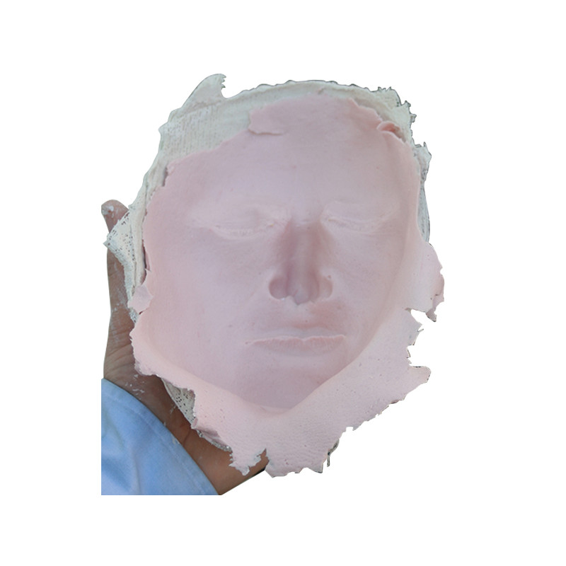Alginate rose pour moulage