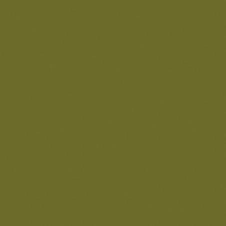 LB HUILE FINE 541 150ML VERT OLIVE