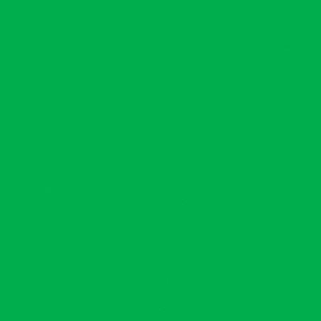 LB HUILE FINE 556 150ML VERT CLAIR