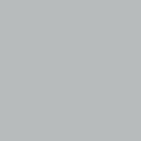 LB HUILE FINE 710 150ML ARGENT IMITATION