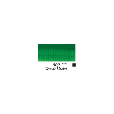 SENN HUILE FINE 200ML 809 VERT DE HOOKER - RIVE GAUCHE