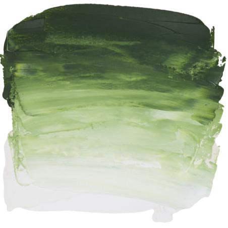 SENN HUILE FINE 200ML 819 VERT DE VESSIE - RIVE GAUCHE