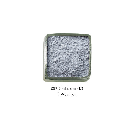 GUARDI PIGMENT 250G 7367TS GRIS CLAIR