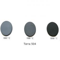 TERRA 502 ARGILE 10KG