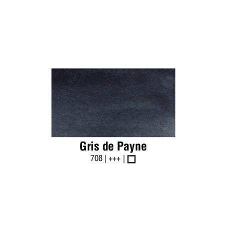VAN GOGH AQUARELLE GRIS DE PAYNE 1/2 GODET