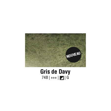 AQUARELLE VAN GOGH 1/2 GODET GRIS DAVY S1