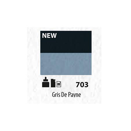 SENN ABSTRACT MAT 60ML GRIS DE PAYNE 703