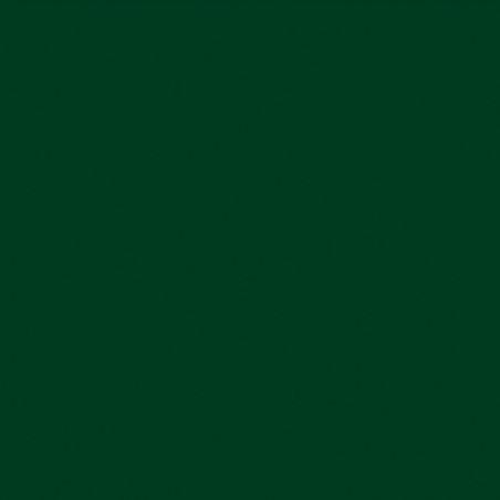 SENN ABSTRACT ENCRE ACRYLIQUE 30ML VERT HOOKER 809