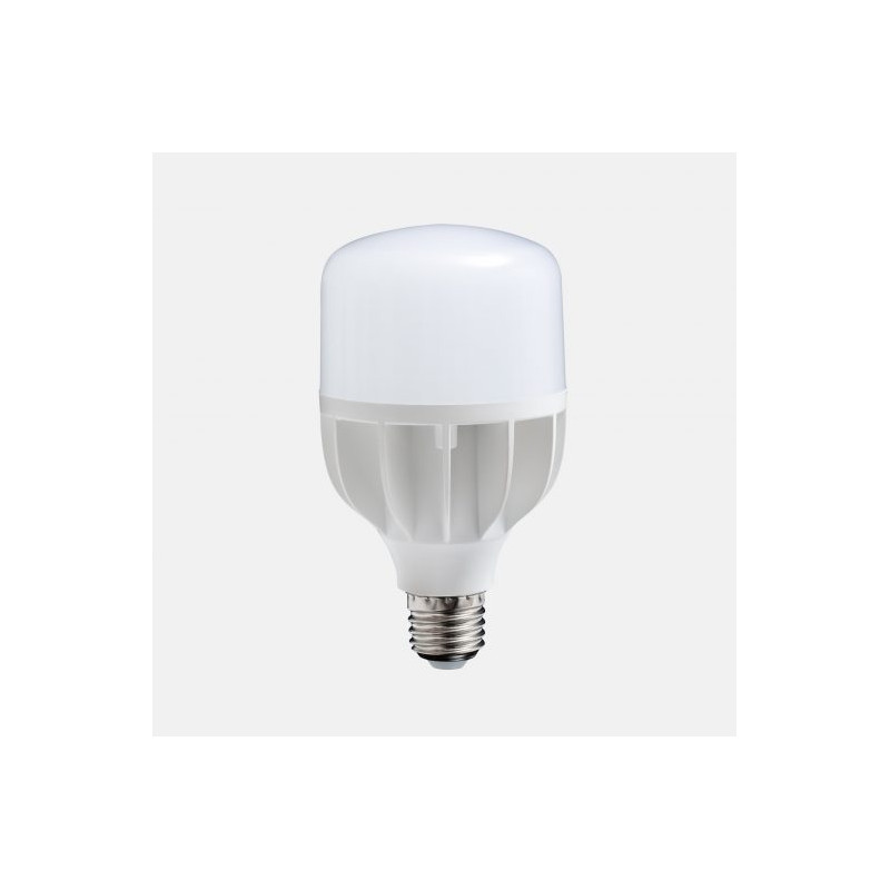 Ampoule LED BULB 18 W - Daylight à basse consommation d'énergie