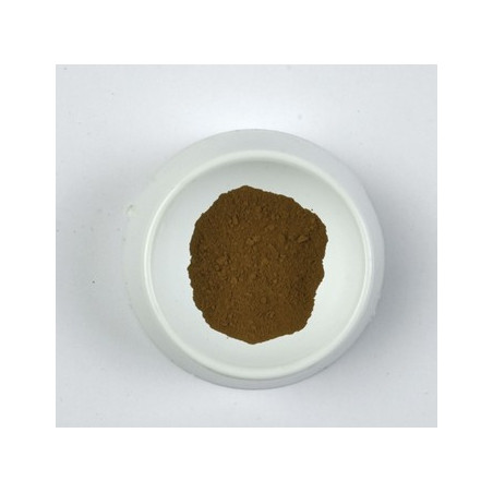 CLAVE PIGMENT 500G 0261 TERRE OMBRE BRULEE CCCN...SUP...
